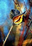Milkweed Photos - Retirement watercolor by Steve Harrington