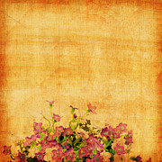Border Metal Prints - Retro Flower Pattern Metal Print by Setsiri Silapasuwanchai