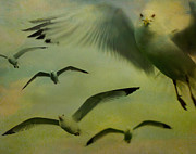 Flying Seagulls Art - Retro Seagulls by Gothicolors And Crows