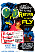 1950s Poster Art Framed Prints - Return Of The Fly, Top Right Danielle Framed Print by Everett