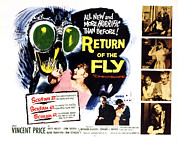 1959 Movies Framed Prints - Return Of The Fly, Vincent Price, Ed Framed Print by Everett