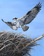 Deb LaFogg-Docherty - Return to the nest