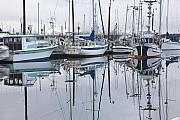 Fishing Boat Reflection Prints - Returning to Port Print by Tim Grams