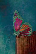 Reve De Papillon - S04bt02 Print by Variance Collections