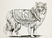 Mascot Drawings Prints - Reveille Print by Barbara Gilroy