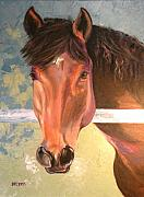 Bay Horse Drawings - Reverie by Susan A Becker