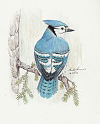 Bird Drawings Originals - Rhapsody in Blue by Heather Hinam
