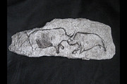 Cave Paintings - Rhino battle by David Lovelace