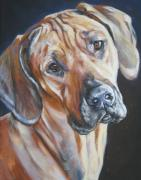 Dog Breeds R-s - Rhodesain ridgeback by L A Shepard