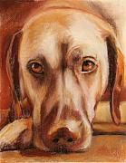 Pet Pastels Originals - Rhodesian Ridgeback by Billie Colson