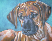 Dog Breeds R-s - Rhodesian Ridgeback Puppy by Lee Ann Shepard