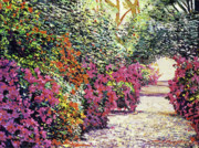 Flower Gardens Prints - Rhododendron Pathway Exeter Gardnes Print by David Lloyd Glover