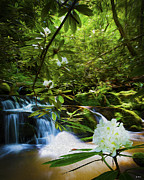 Smokey Mountains Digital Art Posters - Rhododendron Trail Waterfalls Poster by Smokey Mountain  Art
