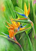Exotic Bird Paintings - Rhonicas Garden by Karen Fleschler