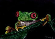 Amphibians Mixed Media Framed Prints - Ribbit II Framed Print by Linda Hiller