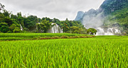 Ban Gioc Framed Prints - Rice field and waterfall Framed Print by MotHaiBaPhoto Prints