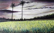 Usha Rai Art - Rice field  by Usha Rai