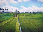 Enver Larney - Rice fields Bali...