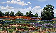 Ohio Pastels Prints - Rich Fields II Print by Mary Jane Erard