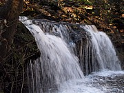 Skating Photos - Ricketts Glen Waterfall 3831 by David Dehner