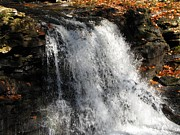 Skating Photos - Ricketts Glen Waterfall 3848 by David Dehner