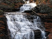 Skating Photos - Ricketts Glen Waterfall 3900 by David Dehner