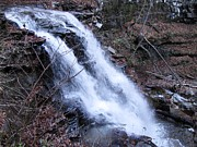 Skating Photos - Ricketts Glen Waterfall 3938 by David Dehner