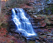 David Dehner Prints - Ricketts Glen Waterfall 3941  Print by David Dehner