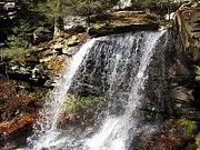 Skating Photos - Ricketts Glen Waterfall 3967 by David Dehner