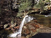 Skating Photos - Ricketts Glen Waterfall 3970 by David Dehner