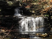 Skating Photos - Ricketts Glen Waterfall 3982 by David Dehner