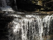 Skating Photos - Ricketts Glen Waterfall 3984 by David Dehner