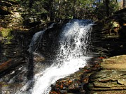 Skating Photos - Ricketts Glen Waterfall 4046 by David Dehner