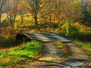 Northern Virginia Photos - Rickety Old Bridge by Joyce  Kimble Smith