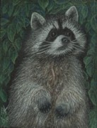 R Alderman - Ricki Raccoon