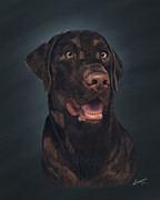 Chocolate Lab Digital Art Posters - Rico Poster by Lisa Binion