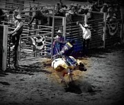 Bull Riders Posters - Ride the Thunder Poster by Amanda Eberly-Kudamik