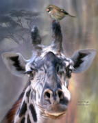 African Giraffe Art Prints - Ridin High Print by Carol Cavalaris