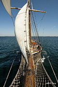 Tall Ships Metal Prints - Riding the Breeze Metal Print by Robert Lacy