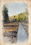 Gravel Road Framed Prints - Riding The Rail II Framed Print by Ricky Barnard