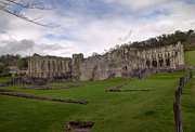 Masonary Art - Rievaulx Abbey by David  Hollingworth