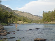 Cutthroat Trout Photo Prints - Right Where I Want To Be Print by Backcountry Views by Darin Letzring