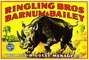 Barnum And Bailey Prints - Ringling Brothers Barnum and Bailey Circus Print by Bill Cannon