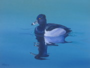Waterfowl Paintings - Ringneck-A Study of Reflections by Michael Allen