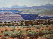 Canyon Paintings - Rio Grande Canyon by Don  Reed