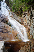 Harts Metal Prints - Ripley Falls - Crawford Notch State Park New Hampshire USA Metal Print by Erin Paul Donovan