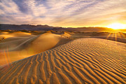 Mesquite Flat Dunes Posters - Rippled Sand Dunes At Sunrise Poster by Laura Knauth