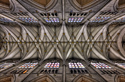 Ceiling Photos - Rise Above by Evelina Kremsdorf