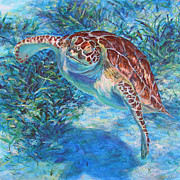 Sea Turtles Paintings - Rise by Li Newton