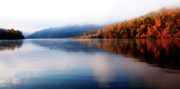 Fog Rising Photos - Rising Fog Morning on the Lake by Thomas R Fletcher